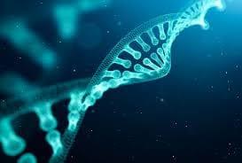 DNA Strand for DNA test