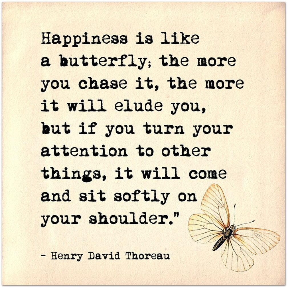 happiness and FIRE like butterfly